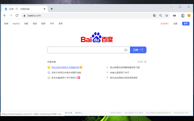 百度药丸 Baidu Capsule