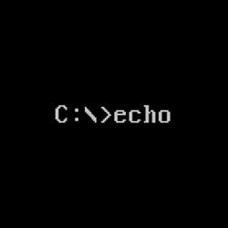 Echo(将输入的文本回显到屏幕上)