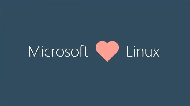 """2014 年 10 月微软CEO 萨蒂亚·纳德拉在旧金山的活动中说道:""""微软爱 Linux !"""""""
