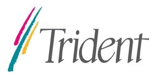 1987年,Trident(泰鼎)公司创立,是2D图形芯片厂商,当时的行业巨头