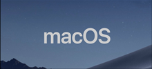 macOS Catalina 10.15.4 (19E266) - InstallESD.dmg